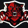 Mascot Wild Cat Back Patch