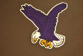 Large Eagle Chenille Back Patch for letter jacket